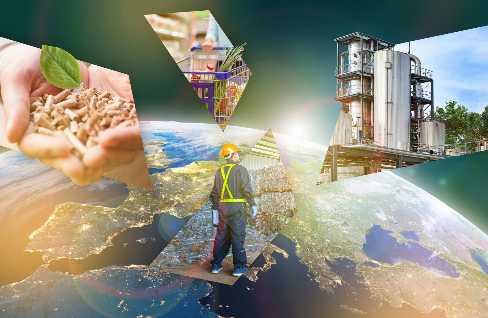 The European Bioeconomy University – driven by demand, accomplished by intellectual leadership